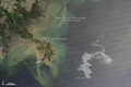 Oil Leak from Damaged Well in Gulf of Mexico